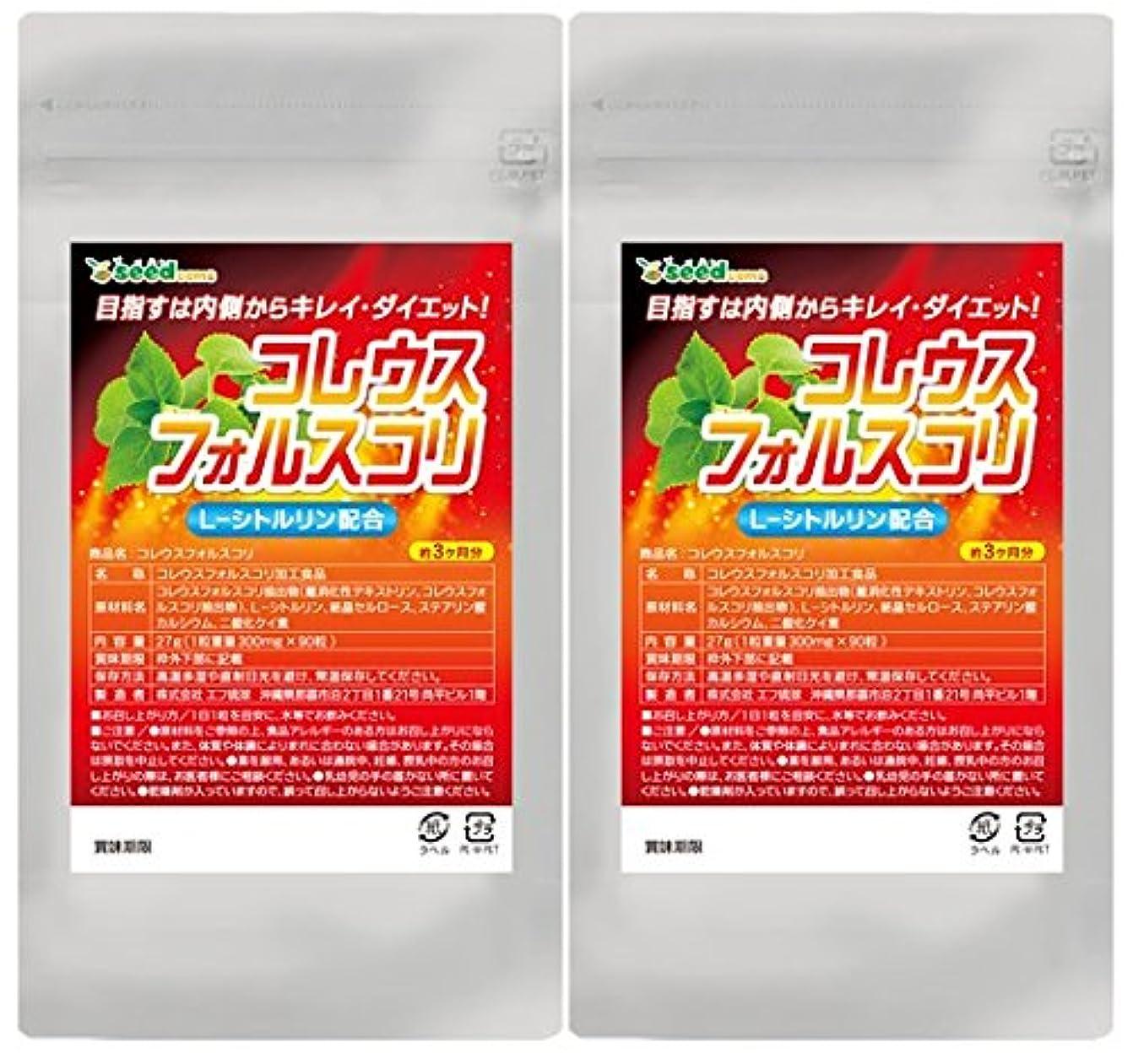 作者場所パントリー【 seedcoms シードコムス 公式 】コレウスフォルスコリ シトルリン入り (約6ケ月分)