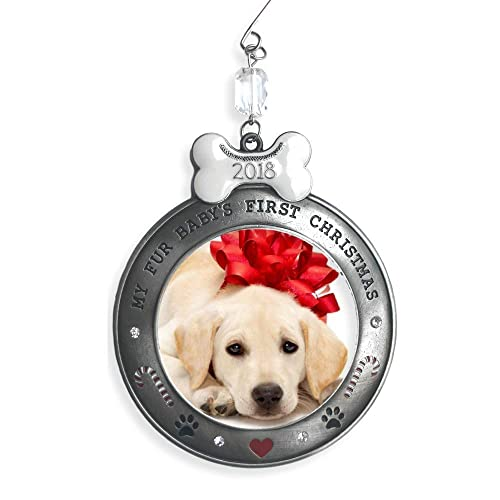 Dogs First Christmas Ornament: Amazon com
