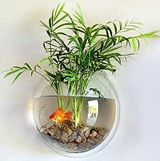 EJG 壁掛け水槽 観葉植物 アクアリウム 背面透明 23cm (カラー小石 留め具付)