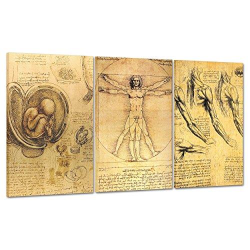 QUADRO MODERNO GIGANTE su Tela Canvas - ARTE - LEONARDO DA VINCI RITRATTO - UOMO VITRUVIANO - MEDICINA ANATOMIA SCHELETRO -100x50cm (cod.1206)