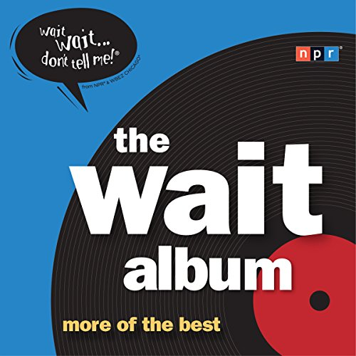 The Wait Album audiobook cover art