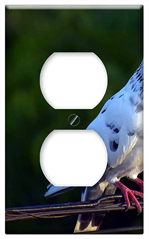 Switch Plate Outlet Cover White Pigeon Feral Pigeon Bird