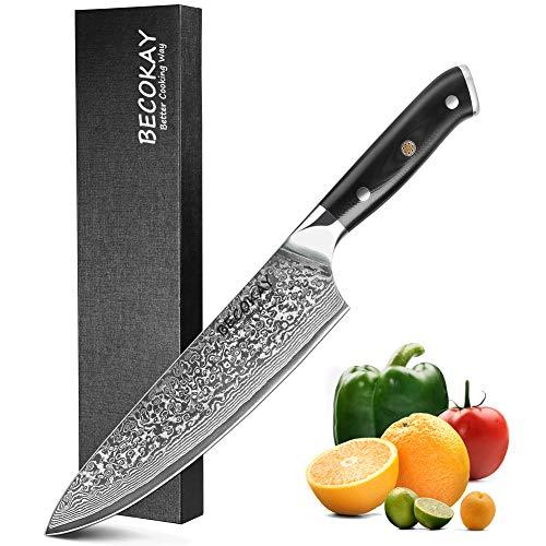 """Damaskus Kochmesser, 8""""scharfe Küchenmesser 67-lagiges Kochmesser mit Premium G10-Griff, professionelles japanisches Damaststahlmesser zum Schneiden von Fleischgemüse, 8 Zoll VG10 Stahlküchenmesser"""