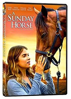 a sunday horse movie