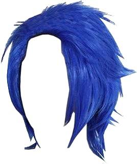 Best levy mcgarden wig Reviews