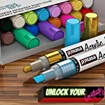 PINTASA Premium Rock Paint Pens, Set of 18 Waterproof Acrylic Markers for Glass, Canvas, Resin, Porcelain, Wood, Mug…
