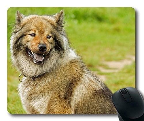 Benutzerdefinierte Mauspad, Hündchen Mauspad, Eurasier mittlerer Spitz wie Hund reinrassiger Hund, Hunde Mauspad