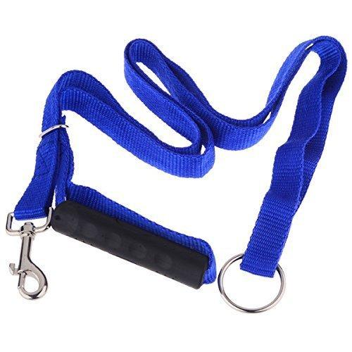 DASHUAIGE Haustierleine Nylon Haustier Hund Hundegeschirr Leinen Für Große Hunde Instant Trainer Rope Walking Training Hundegeschirr Leine Blau