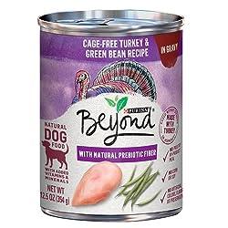 Bestes Hundefutter für Labors - Was haben Sie zum Abendessen?