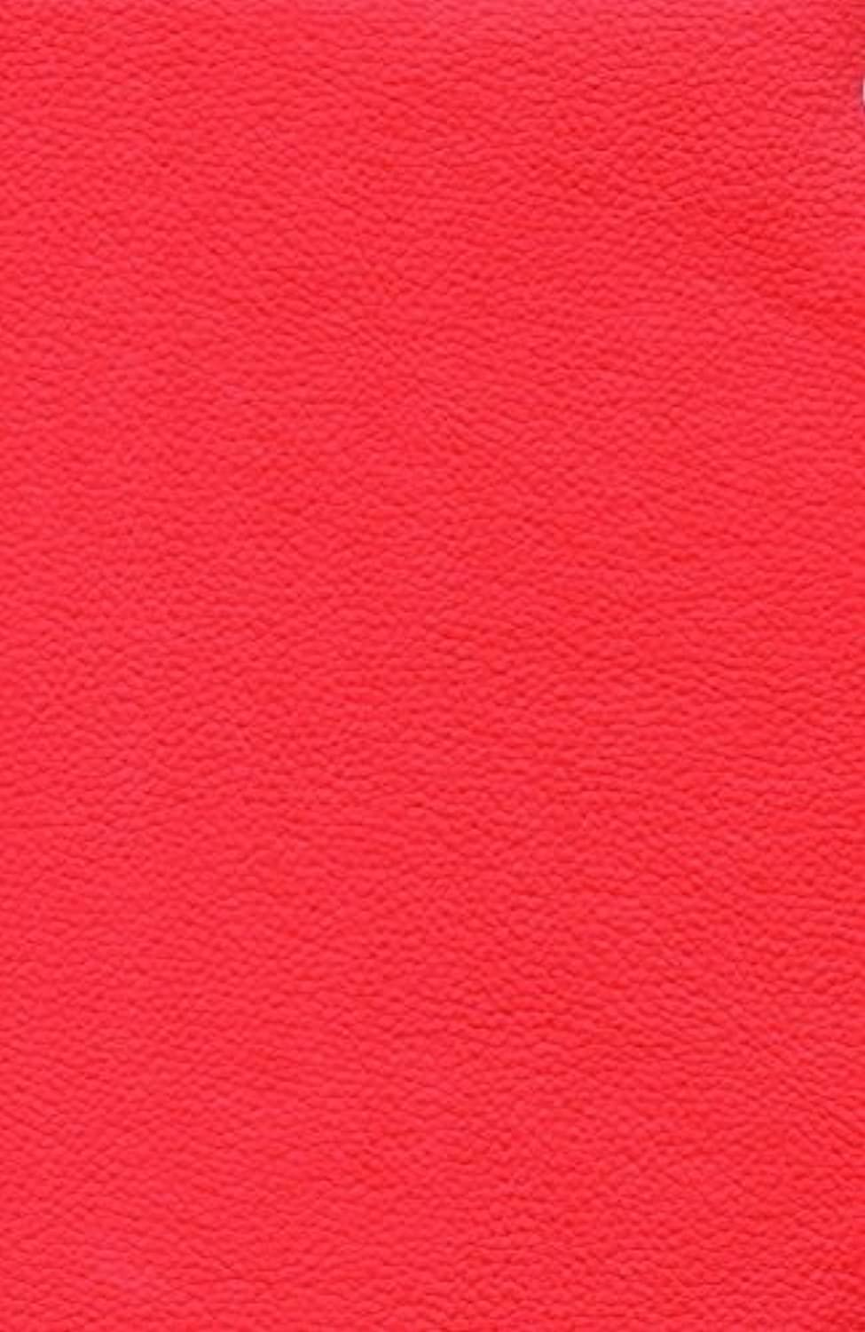 Marine Vinyl rojo Champion Outdoor indoor Pebble Grains Fabric 54  Width Sold By the Yard by luvfabrics