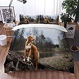 Mingdao Bedding Juego de Funda de Edredón -Little Canine Retriever Perro Animales Energía Cute Wildlife Al Aire Libre,/Microfibra Funda de Nórdico (Cama 240 x 260 cm + Almohada 50X80 cm)