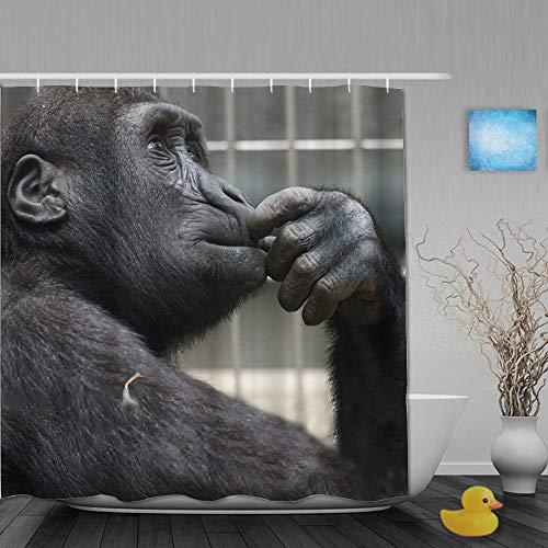 Yhouqukhdeueh Duschvorhang,Affen Denken,Bad Vorhang Waschbar Bad Vorhang Polyester Stoff mit 12 Kunststoffhaken 180x210cm