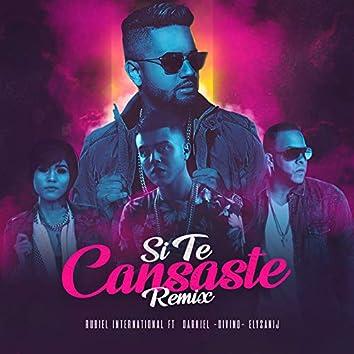 Si Te Cansaste (Remix)