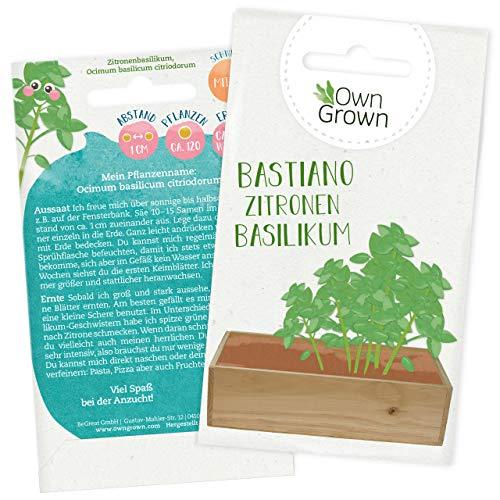 Basilikum Samen: Premium Zitronenbasilikum Samen für Kinder und Erwachsene – Küchenkräuter Samen für ca. 120x Basilikum Pflanze – Zitronenbasilikum Bastiano – Kräuter Saatgut für Kids von OwnGrown