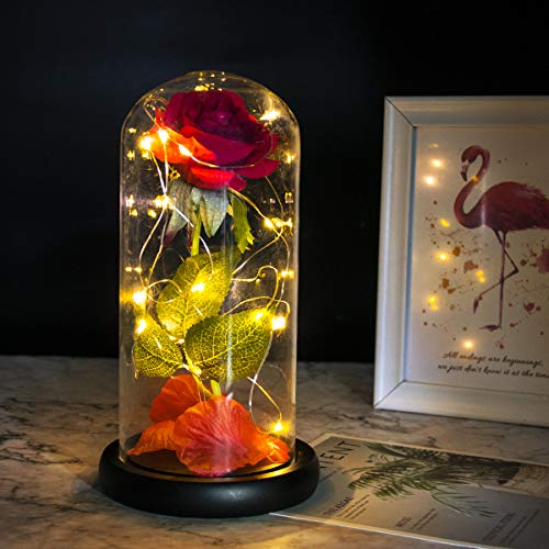 Aeeker Beauty and The Beast Rose Enchanted Red Silk Rose with LED Light in Glass Dome for Valentine's Day Mother's Day Wedding Anniversary Best Gifts for Girlfriend Wife Women Her Birthday