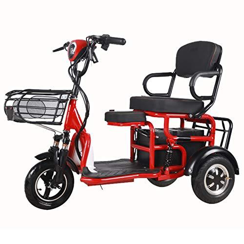 asfaw Scooter eléctrico doble de ocio para ancianos o mayores, plegable y eléctrico, para adultos puede llevar a los niños, vehículo de padres e hijos (color 35 km)