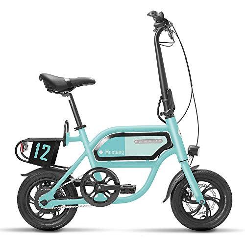Hold E-Bikes Bicicletas eléctricas Adultos Bicicleta eléctrica de Dos Ruedas 36V 250W...