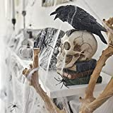 MAXEE Spinnennetz 2 Pcs(80G Weiß Baumwolle 20 Spinnen) Halloween Spinnennetz Spinnennetz Deko Halloween Dekoration Satz for Halloween Party - 4