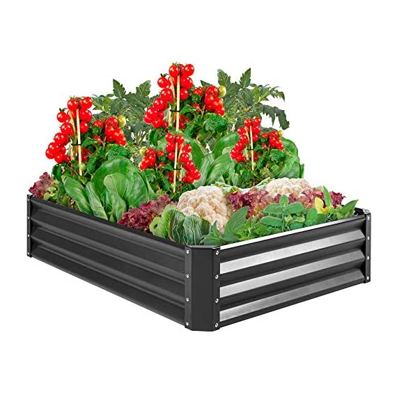 Best Choice Products 4x3x1ft Outdoor Metal Raised Garden Bed Box Vegetable Planter for Growing Fresh Veggies, Flowers… 1 EASY ASSEMBLY: Beveled edges can easily be screwed to the sides using a Phillips screwdriver and the included wingnuts and screws so it's ready in no time BUILT TO LAST: Made of powder-coated steel plates, with a rust-resistant finish to keep your garden bed looking its best for years to come OPEN-BOTTOM GARDEN BED: Built with an open base to prevent water buildup and rot, while allowing roots easy access to nutrients