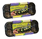 Jiffy 36mm Windowsill Greenhouse (2 Pack)