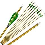 ZSHJG 30 Pulgadas Flechas de Carbono Spine 900 Flechas de Caza con Plumas de Pavo Arcos y Flechas para Caza o Práctica con Punta reemplazable 10pcs (Verde)