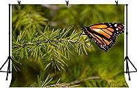 HD 7x5ftパイン針蝶の背景グリーンパイン針屋外のキャンプの背景の自然の美しさのための美しい蝶室内装飾壁紙LY250