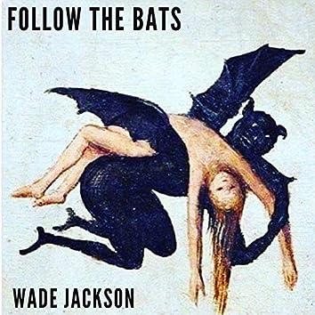 Follow the Bats