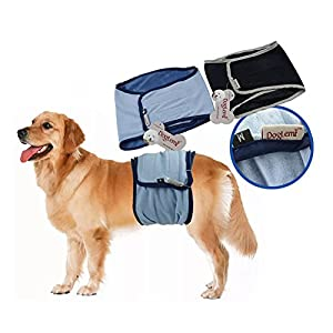 JBY 2psc lavable pour chien Pantalon de protection masculine Animal hundewindeln Belly Wrap Seuil Couche sanitaires réutilisable lactique (unterwäche pour la formation