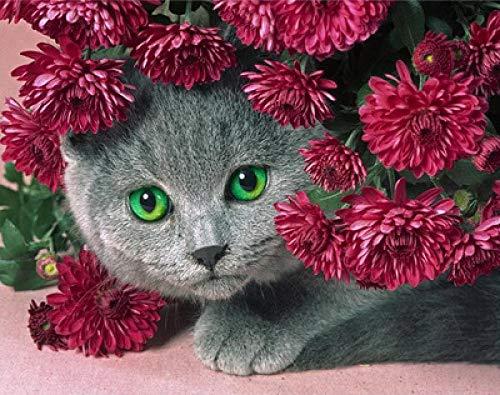 Diy Grey kat 5D diamant schilderij woonkamer slaapkamer decoratie hangmat vogels geschenken 50x70cm/20x28in 1 kleur