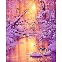 5DDIYフルラウンドドリルダイヤモンドペインティングキットラインストーン描画画像家の装飾アートクラフト-冬の水に白い白鳥-50x50cm