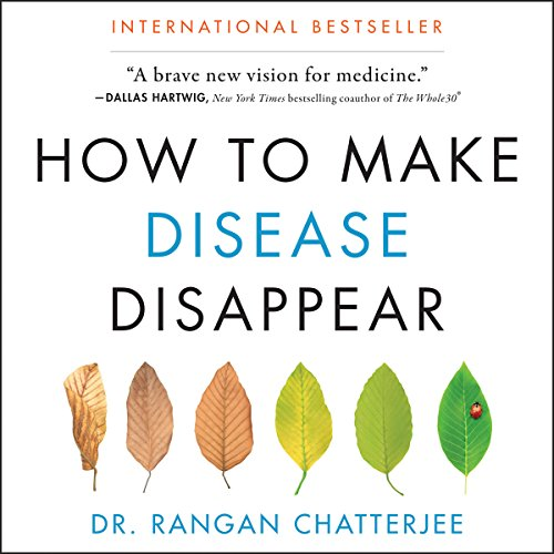 Page de couverture de How to Make Disease Disappear