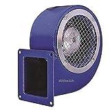 BDRS 120-60 Industrial Radial Radiales Ventilador...