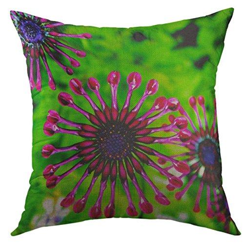 Funda de almohada decorativa para sofá, cama, decoración del hogar, diseño de margaritas africanas, color rosa, verde, funda de almohada tropical, 45,7 x 45,7 cm