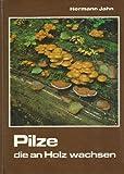 Pilze, die an Holz wachsen
