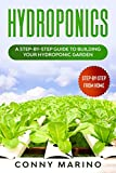 Hydroponics: A Step-by-Step Guide to Building Your Hydroponics Garden
