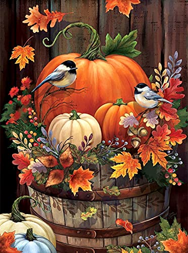 Diamond Art Kits, 5D Pumpkin Diamond Painting Kits for Adults Full Drill Berries Birds Fall Diamond Painting Kit for Thanksgiving Gift, Autumn, Relaxation, Home Wall Decor (12x16inch)