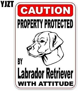 Suchergebnis Auf Für Labrador Hund Autositze Zubehör Baby
