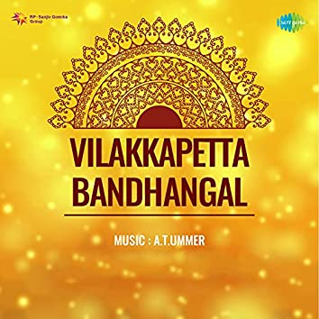 "Penninde Kannil (From ""Vilakkapetta Bandhangal"") - Single"