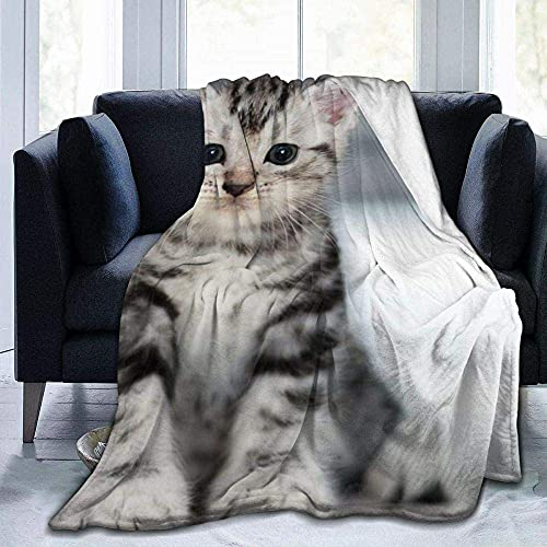 Manta de felpa, diseño de gato, ligera, supersuave, cálida, cómoda, de forro polar, para sofá, silla, 156 x 150 cm