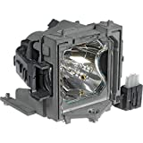 Amazing Lamps SP-LAMP-017 Replacement Lamp in Housing for Infocus Projectors