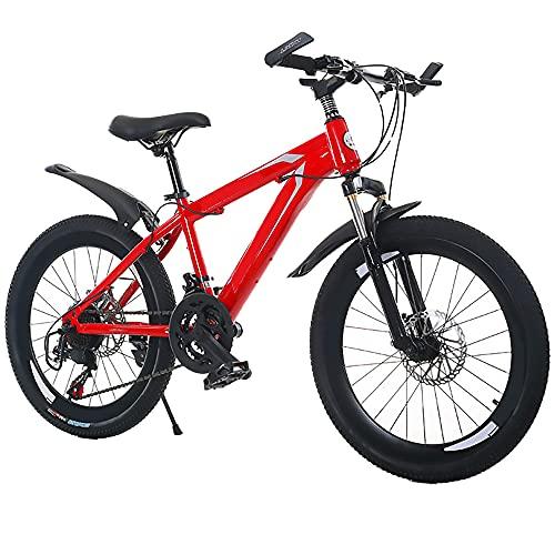 Dewei Bicicleta de montaña Plegable 24 Pulgadas 26 Pulgadas 21/24/27 Bicicleta de Freno de Disco Dual de Velocidad Variable