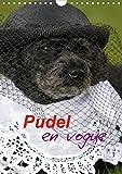 Pudel en vogue (Wandkalender 2020 DIN A4 hoch): Zwei süße Pudel als Models (Monatskalender, 14 Seiten )