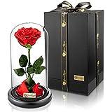 YourRoses® echte Premium Rose im Glas Geschenkbox | Lange Haltbarkeit & edles Geschenk als Liebesbeweis