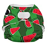 Imagine Baby Products Newborn Bamboo AIO 2.0 Diaper, Hook & Loop, Watermelon Patch