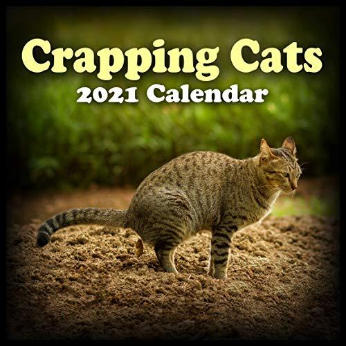 Crazy Calendar 2021 Pictures