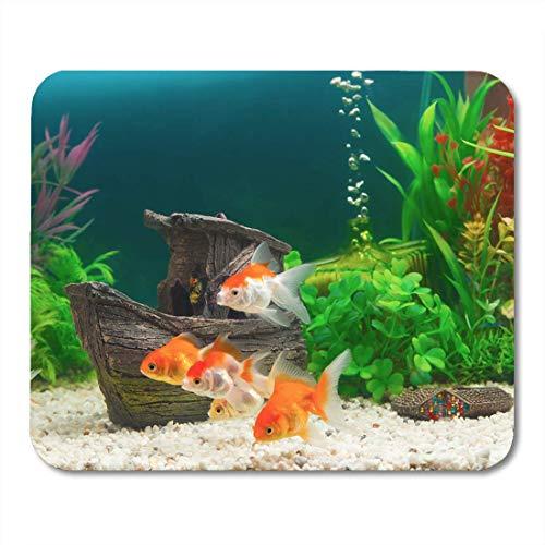 Muis Pads Oranje Dier Goudvissen in Zoetwater Aquarium Groen Mooi Geplant voor notebooks, Desktop Computers matten