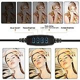 """BLOOMWIN Anillo de Luz LED Regulable 4"""" para Fotografía Aro de Luz con Soporte Teléfono Brazo Largo Flexible USB Lámpara de Mesa para Móvil Youtube Selfie Video Maquillaje Transmisión en Vivo"""