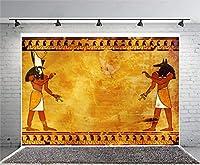 7X5フィート ビニール 古代エジプト壁画 背景 ファラオ 象形文字 手描きピラー 宗教 芸術的 信仰 彫刻 ドア 写真背景 子供 大人 写真スタジオ 小道具
