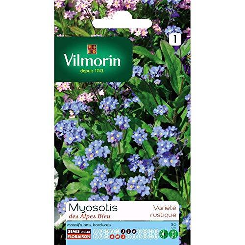 Vilmorin : Myosotis Des Alpes Bleu : En Sachet