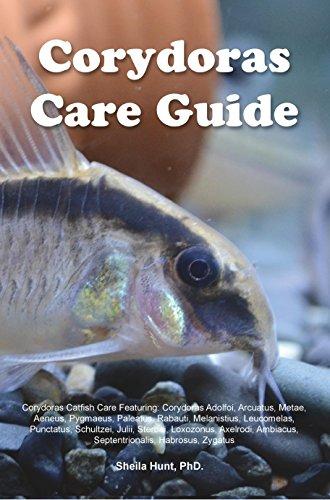 Corydoras Care Guide. Corydoras Catfish Care Featuring: Corydoras Adolfoi, Arcuatus, Metae, Aeneus, Pygmaeus, Paleatus, Rabauti, Melanistius, Leucomelas, ... Schultzei, Julii, Sterbai, (English Edition)